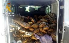 La Guardia Civil actúa contra varias empresas por vender jamón caducado