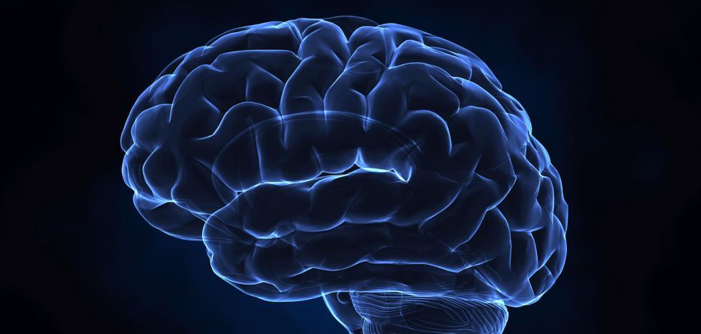 Los trastornos psiquiátricos tienen una base genética común