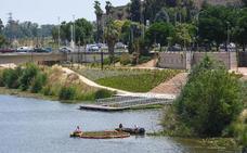 La Confederación trae la barca cosechadora para controlar el camalote