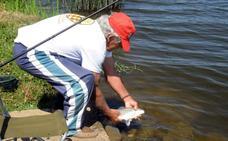 El Congreso autoriza que la carpa pueda ser capturada y devuelta al río