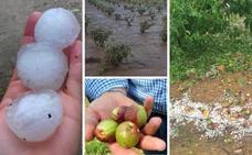 Agroseguro inicia el pago en Extremadura de los daños por los pedriscos de primavera