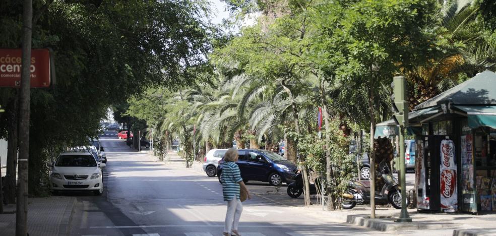 Cáceres Verde advierte del peligro de desertificación en Virgen de Guadalupe