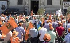 UPA se suma a las quejas contra los aranceles de la aceituna