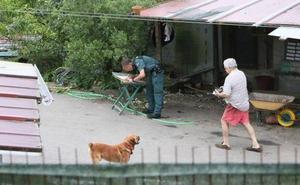 Fallece un hombre de 87 años tras el ataque de seis perros en Asturias