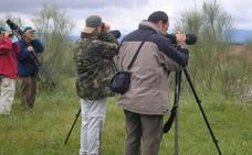 Nuevo avistamiento de aves en el parque de Almaraz
