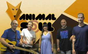 Los Quijotes y Animal Soul actúan en la terraza del López