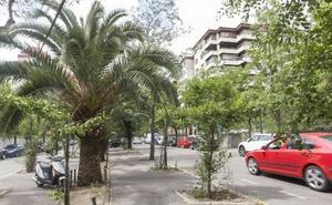 La adjudicación de la avenida Virgen de Guadalupe de Cáceres se retrasa por una baja temeraria