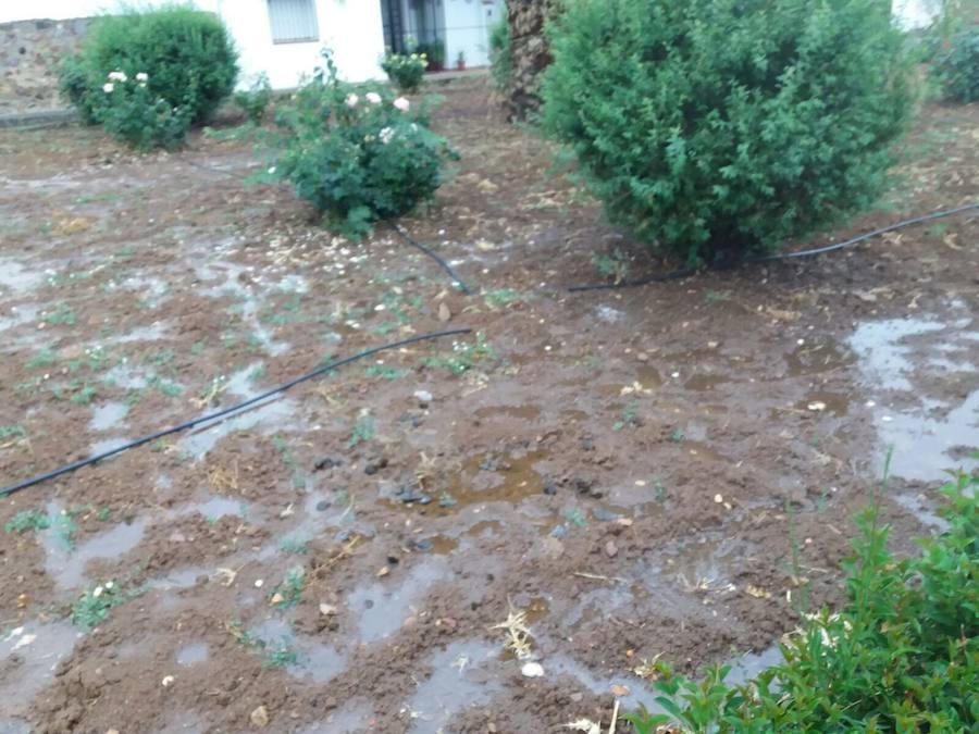 El hurto de sistemas de riego en la pedanía de Lácara inunda varias zonas verdes