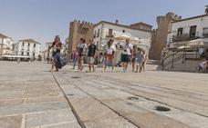 Navarro apoya las inspecciones para evitar los alquileres turísticos ilegales