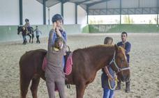 Roban el material de equitación a la asociación de zooterapia