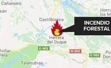 Desactivado el nivel 1 de peligrosidad por un incendio cerca de Castilblanco al ser estabilizado