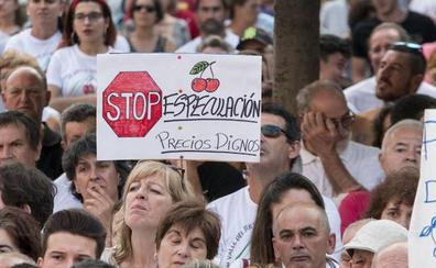 La Asamblea insta al Gobierno a retirar parte de la producción de cerezas para estabilizar los precios