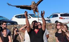 Amus libera en Reina buitres, milanos y águilas recuperadas
