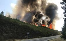 Medios del plan Infoex trabajan para la extinción total de los cuatro incendios declarados este jueves en la región