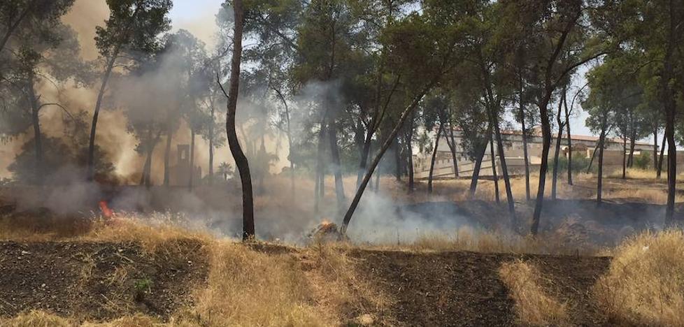 Quinto incendio en La Alcazaba de Badajoz este verano