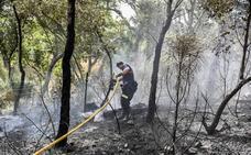 La rápida actuación logró reducir a 118 las hectáreas quemadas en San Vicente