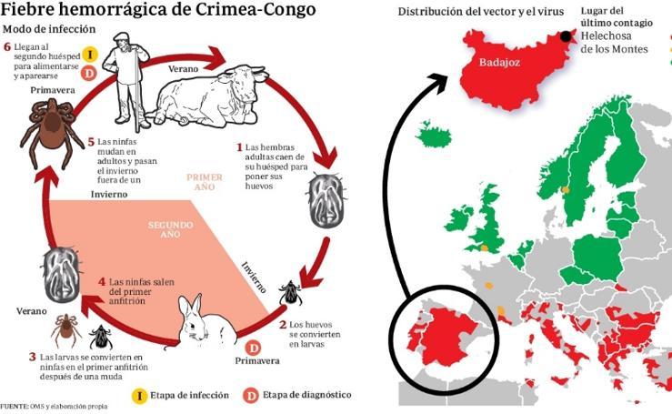 Fiebre hemorrágica de Crimea-Congo