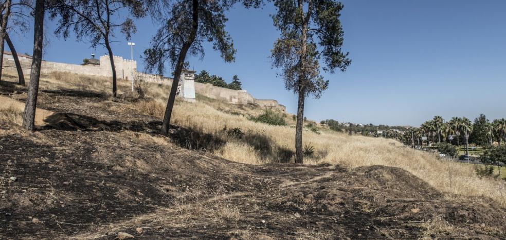 El desbroce de la Alcazaba de Badajoz contra los incendios lleva un año estancado