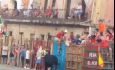 Ingresada en la UCI en estado grave una mujer corneada en Garrovillas