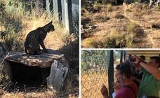 El Centro de Recuperación de Fauna y Educación Ambiental 'Los Hornos' ya está preparado para recibir visitas