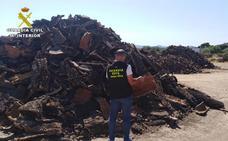Detenido por el robo de 1.000 kilos de corcho en varias fincas de Arroyomolinos