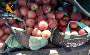 Sorprendidos dos vecinos de Badajoz con 300 kilos de fruta robada en Mérida