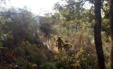 El incendio de Garganta la Olla, en imágenes