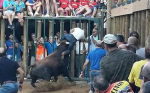 Otro corneado por asta de toro en Esparragosa de Lares eleva a tres los heridos en festejos locales