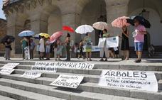 Unas 70 personas se manifiestan contra la tala en la avenida Virgen de Guadalupe de Cáceres