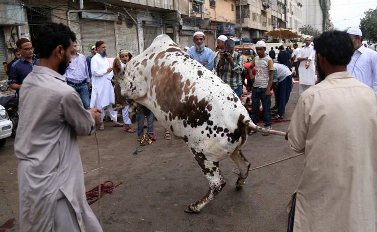 Fiesta del Eid al Adha en Pakistán