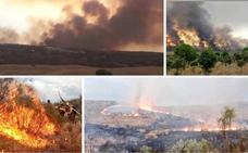Estabilizado el incendio forestal que ha afectado al entorno de Mata de Alcántara