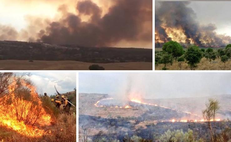 Los agentes actuando para apagar el incendio que ha afectado a Mata de Alcántara