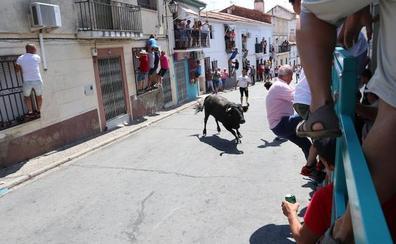 Los pueblos no renuncian a su toro