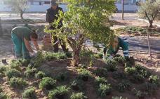 Medio centenar de jóvenes se formarán en jardinería y atención sociosanitaria