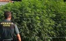 La Guardia Civil detuvo a cinco personas por tráfico de droga en la provincia de Cáceres en agosto