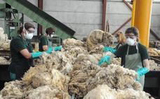 Comercial Ovinos y EA Group proyectan una planta para procesar la piel de cordero en Villanueva