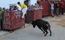 Los actos religiosos se fusionan con música y capeas en las fiestas de Bodonal de la Sierra