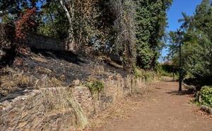Empiezan los estudios arqueológicos para desbrozar la Alcazaba de Badajoz