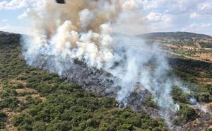 Nivel 1 de peligrosidad por un incendio en una zona de monte de Jerez de los Caballeros
