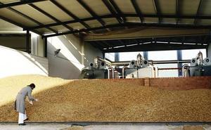 Bruselas destina 12,5 millones en ayudas a pymes para la producción de biocombustibles en Extremadura
