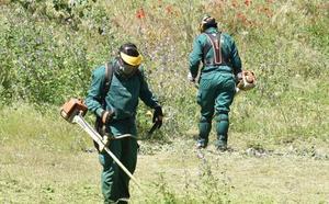 El Ayuntamiento de Plasencia cree que ha bajado el número de incendios