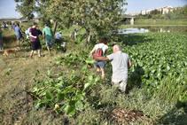 Unas 600 personas se concentran en Badajoz para exigir que el camalote desaparezca