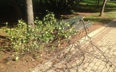 La intensa tormenta de anoche en Cáceres genera solo leves daños