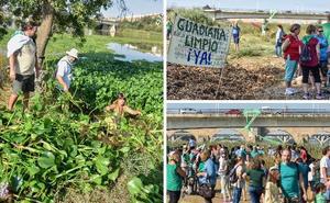 600 vecinos piden una solución definitiva ante la plaga de camalote