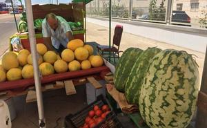 Almendralejo registra 21 puestos de sandías y melones con licencia