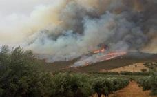 Acuerdo de las dos diputaciones para ganar tiempo en la extinción de incendios en pueblos limítrofes