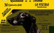Quintana de la Serena acoge la I Jornada de Formación del Mundo del Galgo