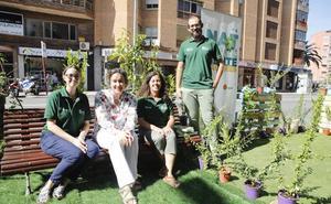 Un jardín sobre el asfalto y un festival para Dimas