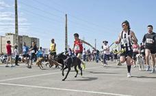 Perros y dueños vuelven a correr por una causa solidaria en Badajoz