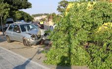 Una conductora ebria choca contra un árbol del Paseo Fluvial de Badajoz